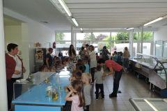 green week-gradska tržnica bjelovar-25.svibnja 2018.-FOTO Grad Bjelovar- (10)